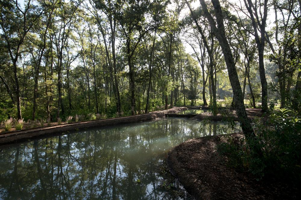 lq bosque - estanque07.jpg