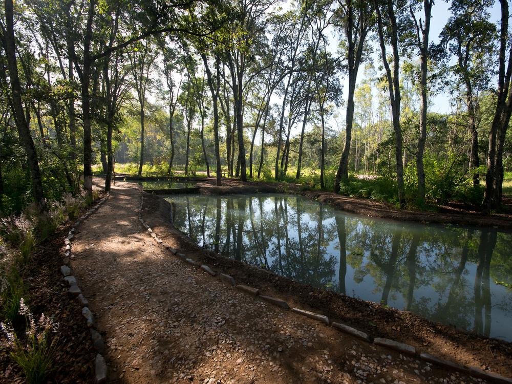lq bosque - estanque08C.jpg