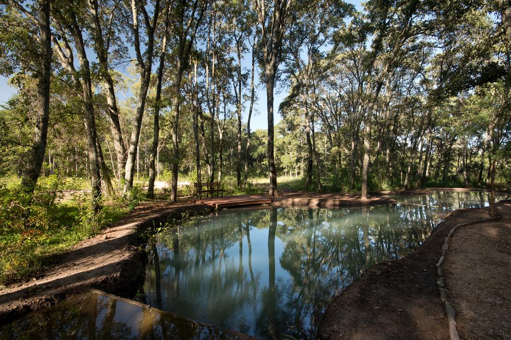 lq bosque - estanque09.jpg