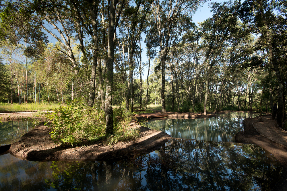 lq bosque - estanque10.jpg