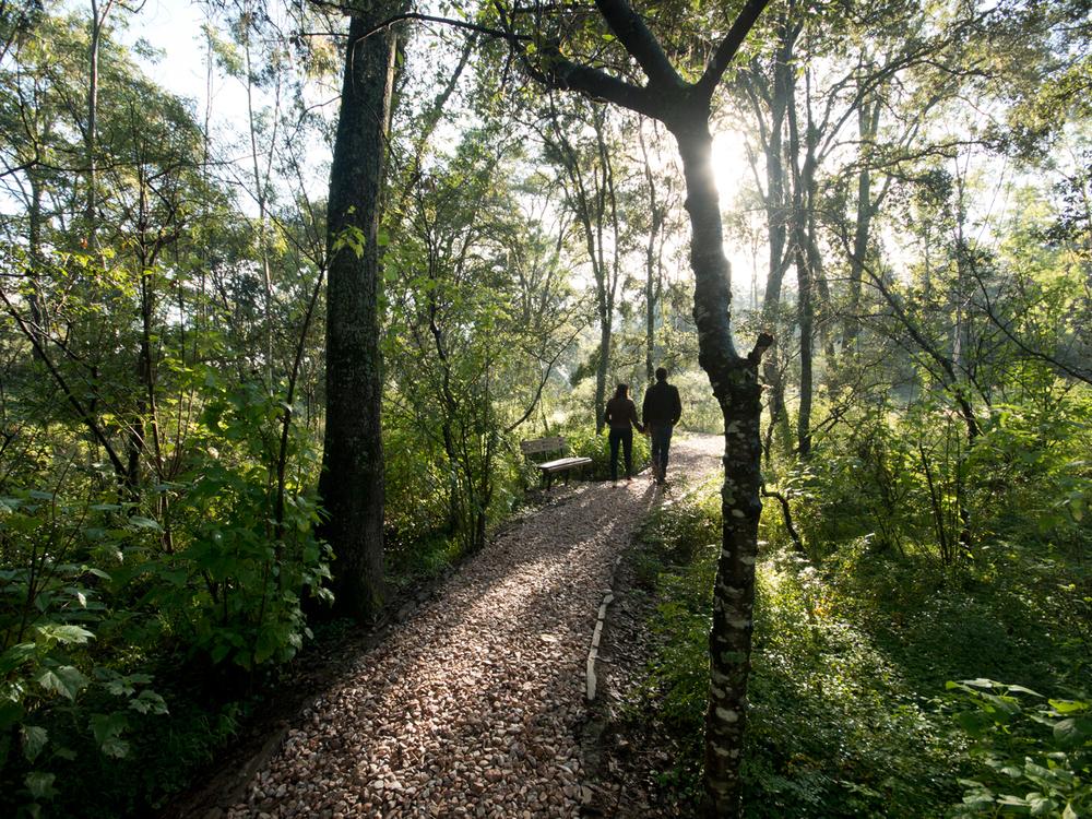 lq bosque - per03.jpg