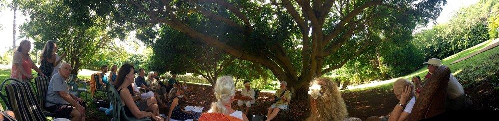 大きなマンゴーの木の下で過ごす至福のひと時