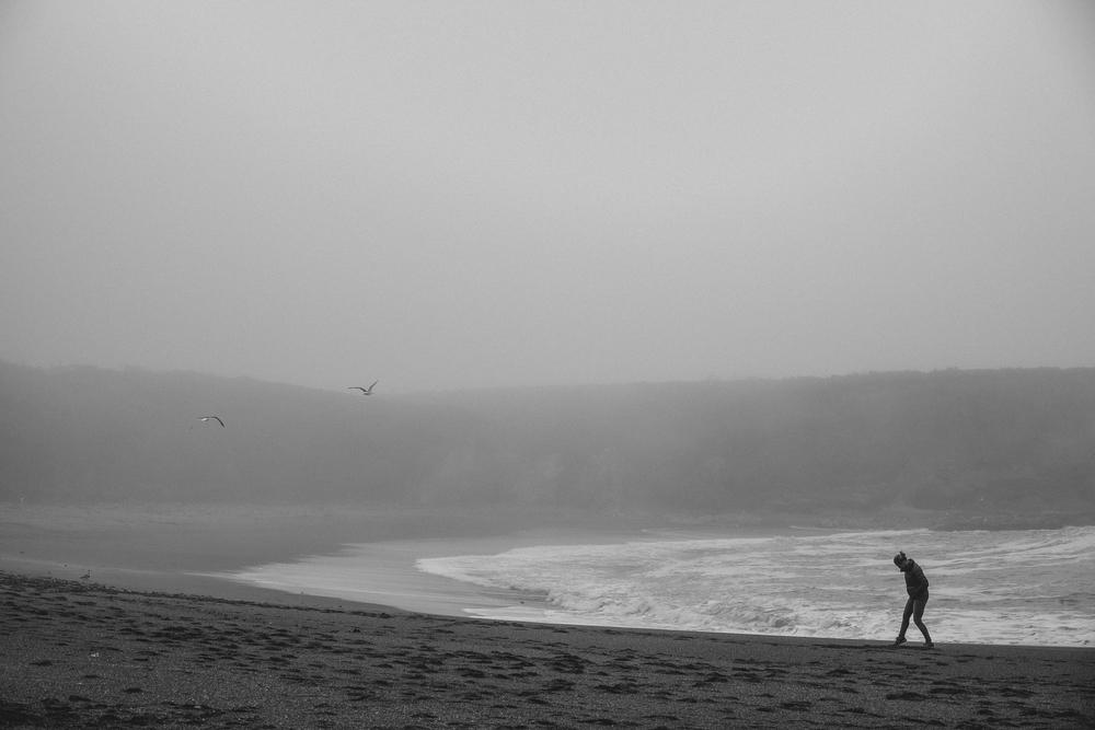 California Coast -38.jpg