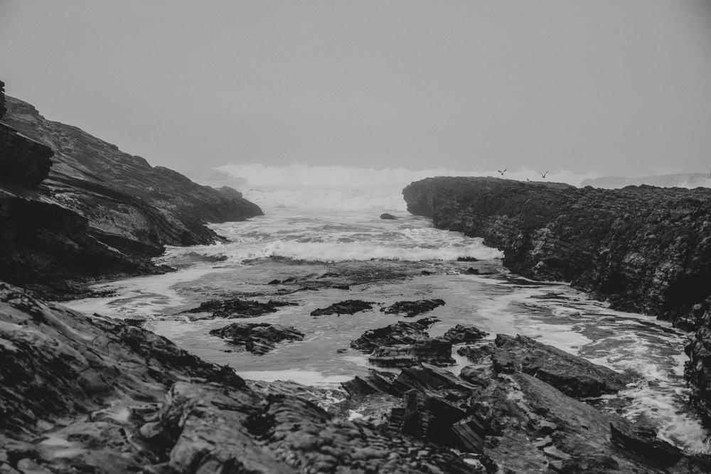 California Coast -39.jpg