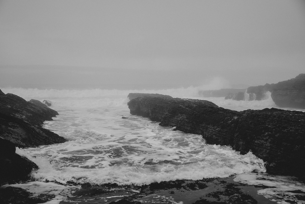 California Coast -44.jpg