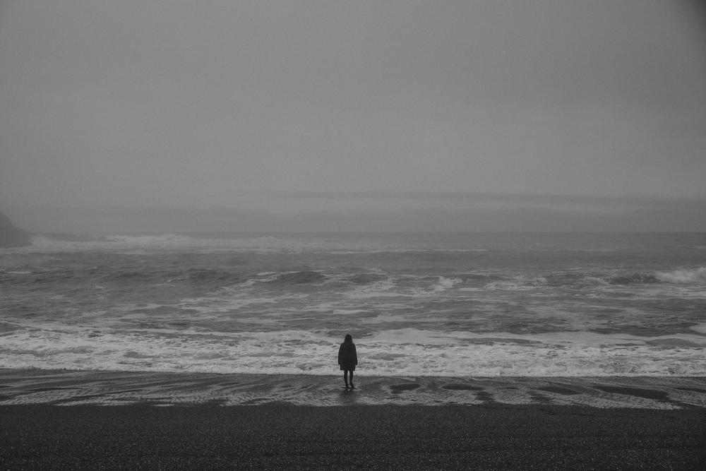 California Coast -48.jpg