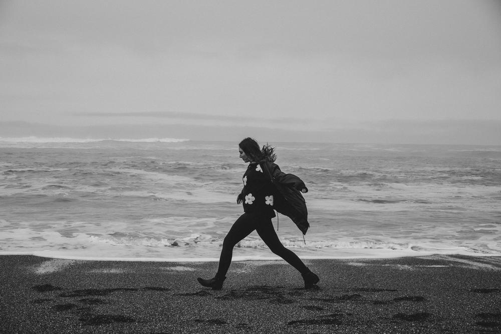 California Coast -51.jpg