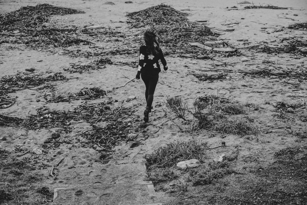 California Coast -67.jpg