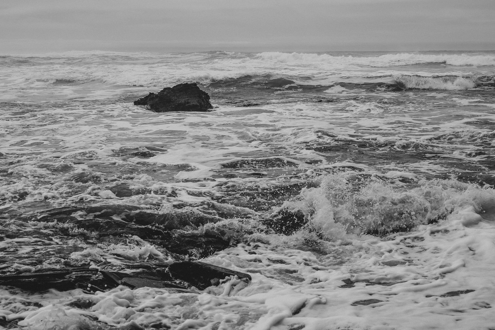 California Coast -70.jpg