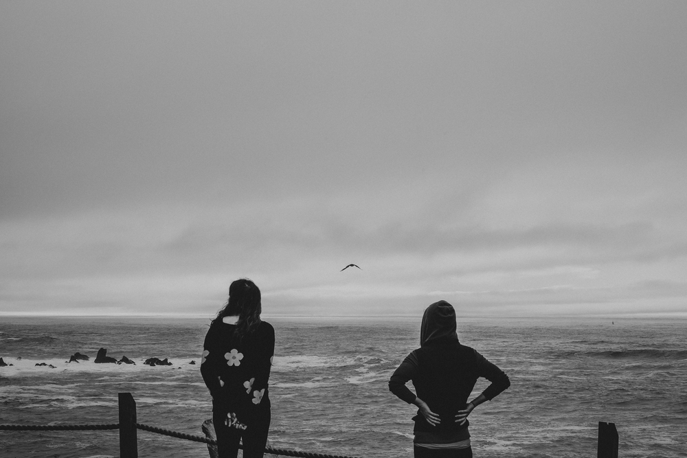 California Coast -77.jpg