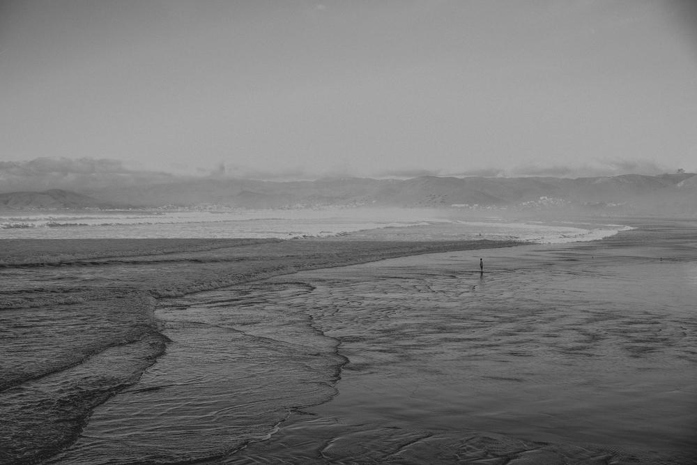 California Coast -81.jpg