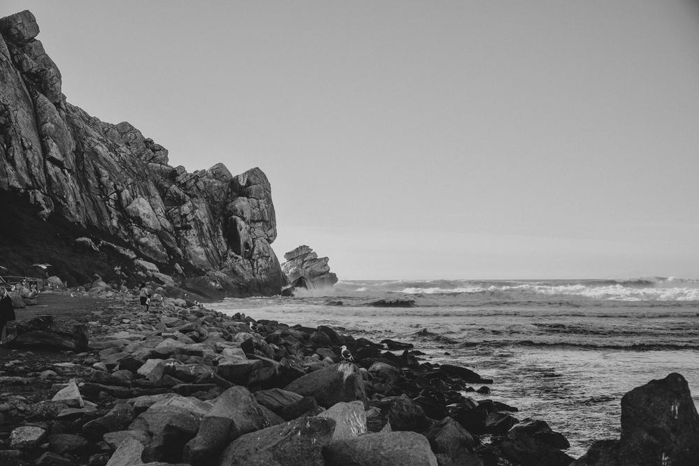 California Coast -83.jpg