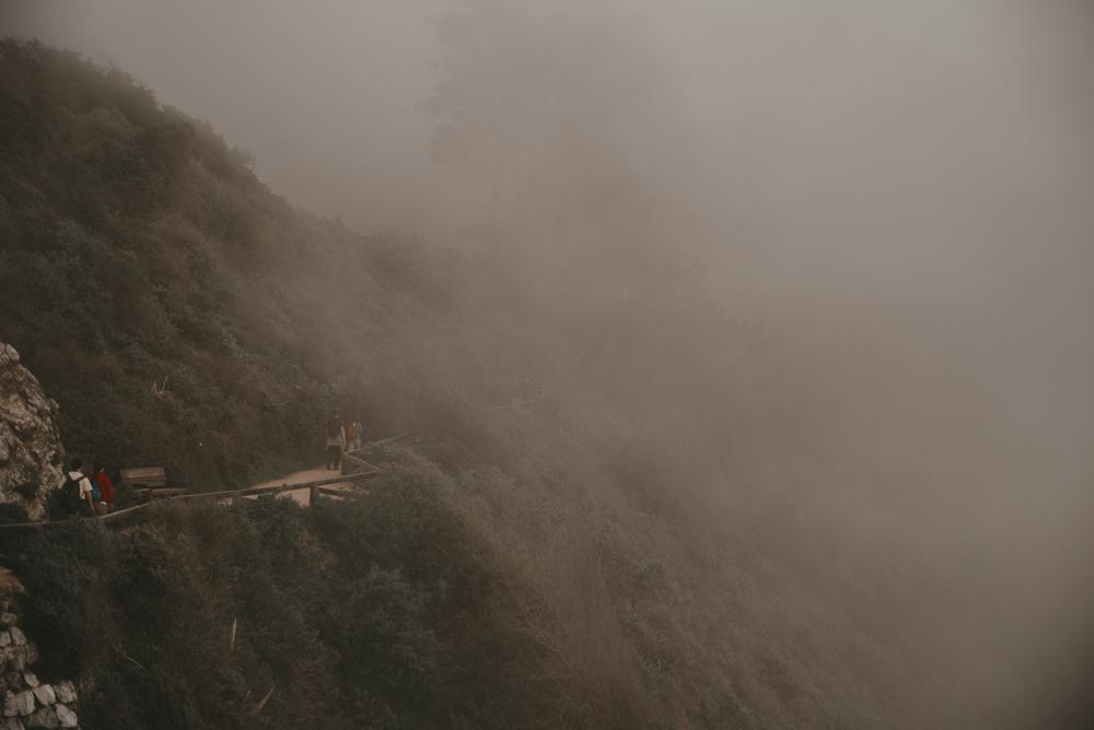 Big Sur fin gallery-42.jpg
