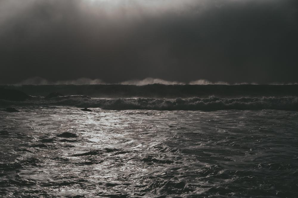 Big Sur fin gallery-51.jpg