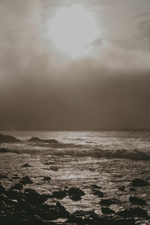 Big Sur fin gallery-52.jpg