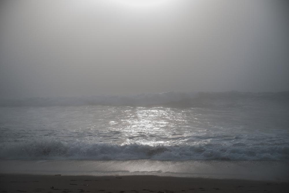 Big Sur fin gallery-54.jpg