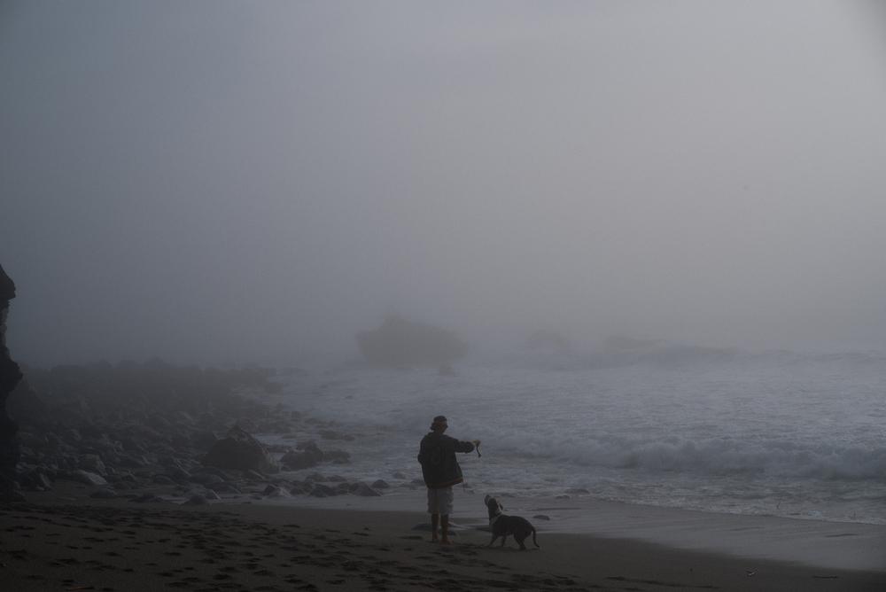 Big Sur fin gallery-56.jpg