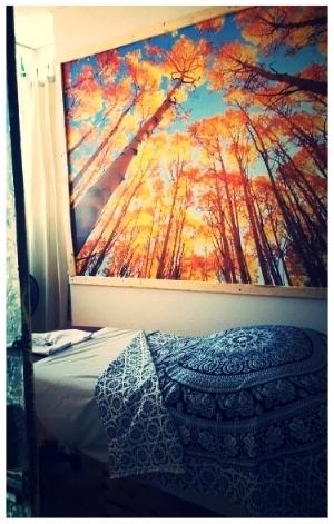 Ms room.jpg