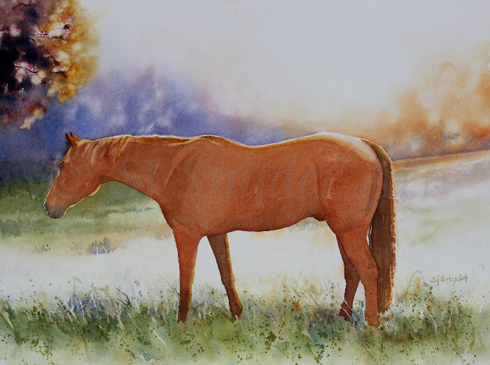 watercolor horse painting of a horse in a pasture during sunset