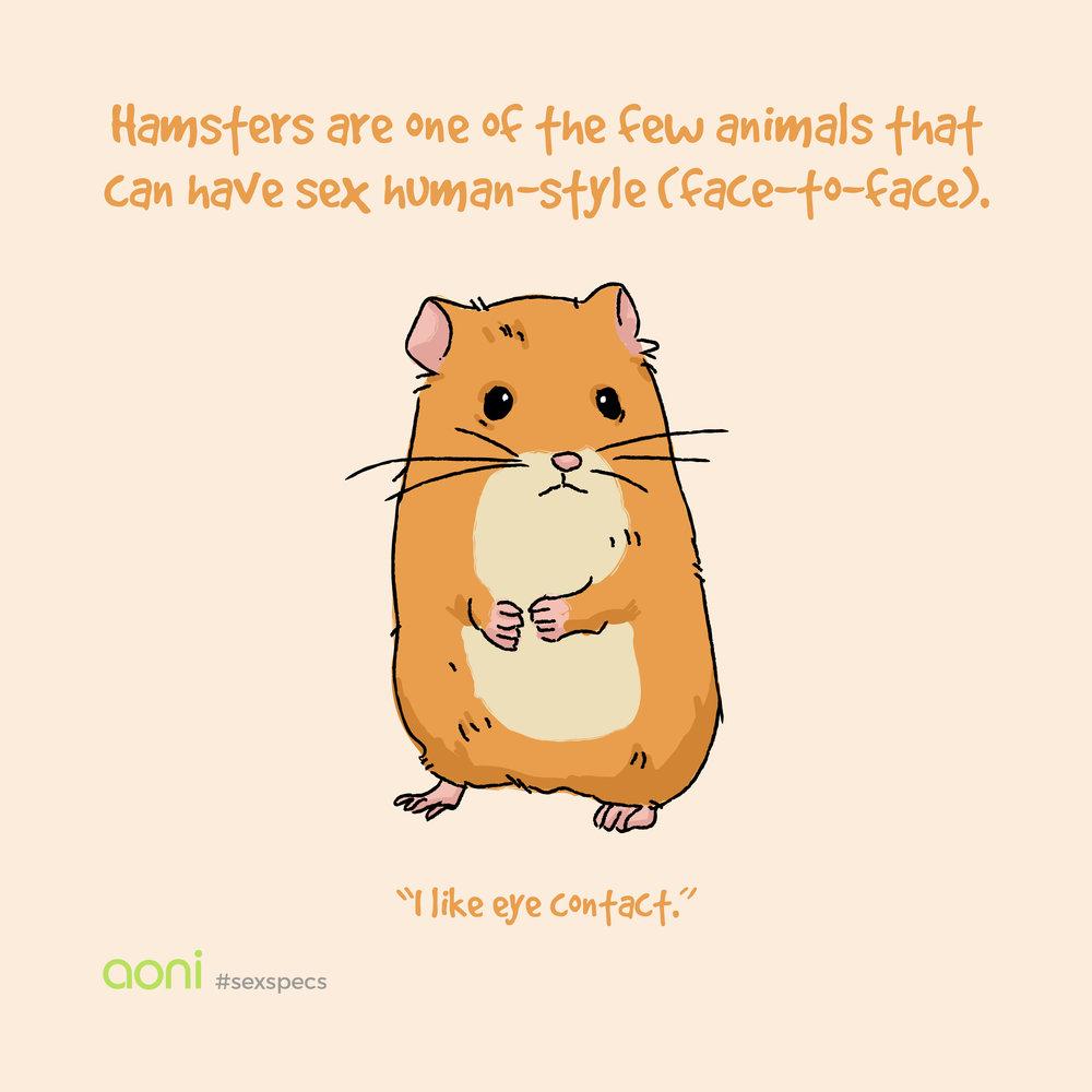 animalsexspecs4.jpg