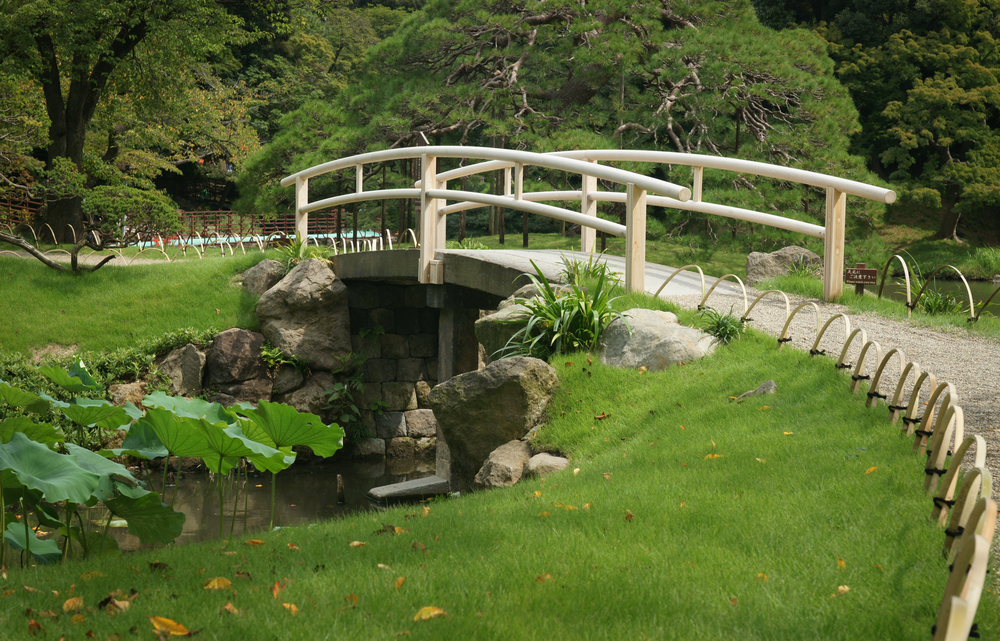 Bridge over Lotus Pond