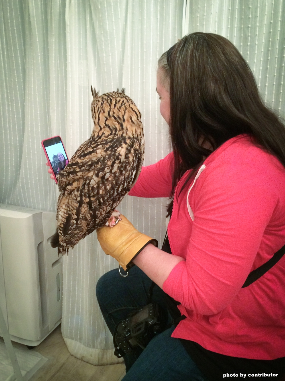 taking a selfie with an owl