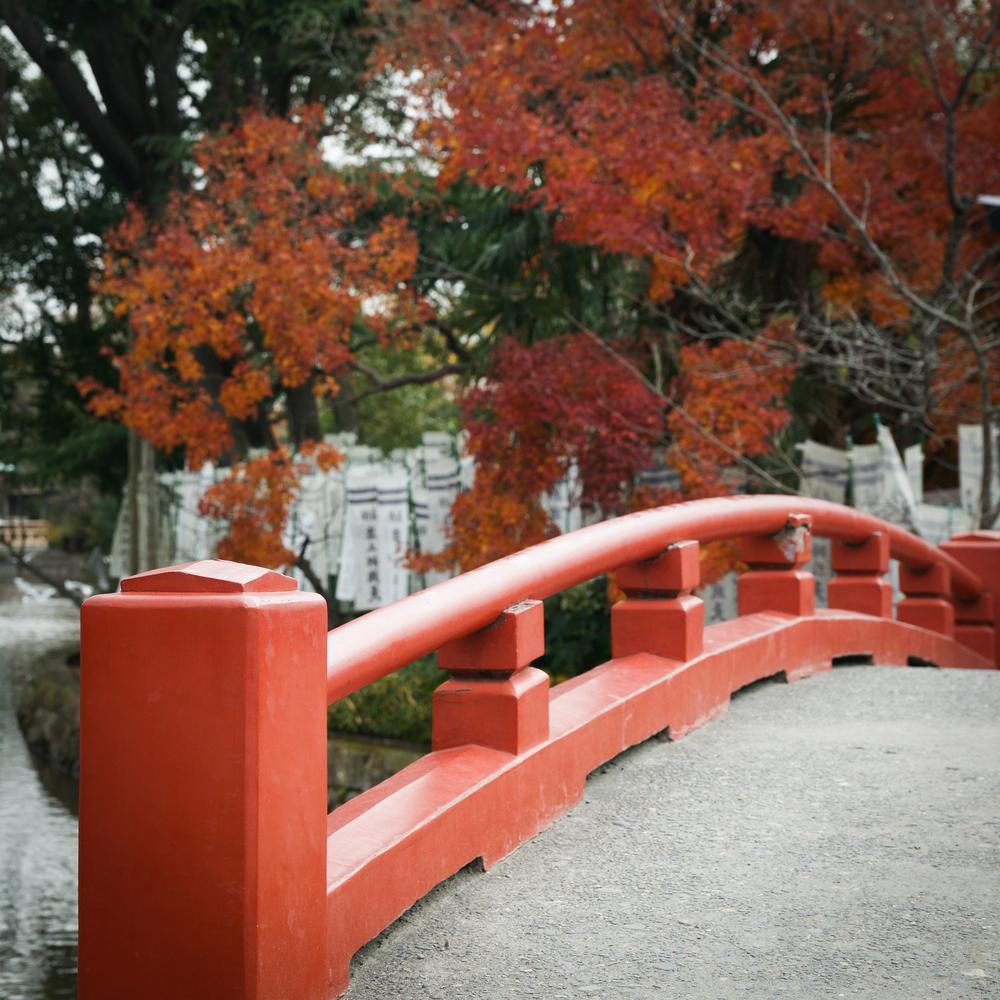 Red Bridge to small shrine at Tsurugaoka Hachimangu
