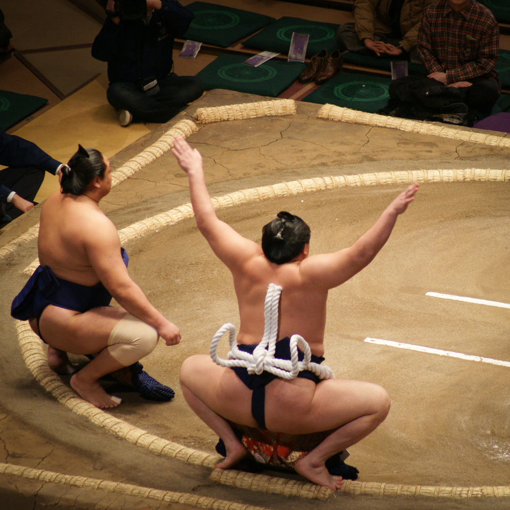 Yokozuna wrestler wearing a large hemp braided belt, weighs 25-35 lbs