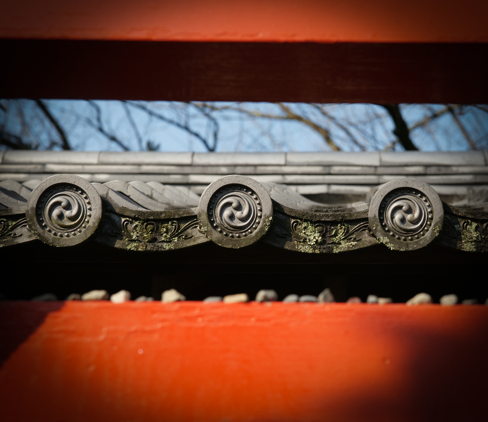 Detail from Ryoanji Temple garden