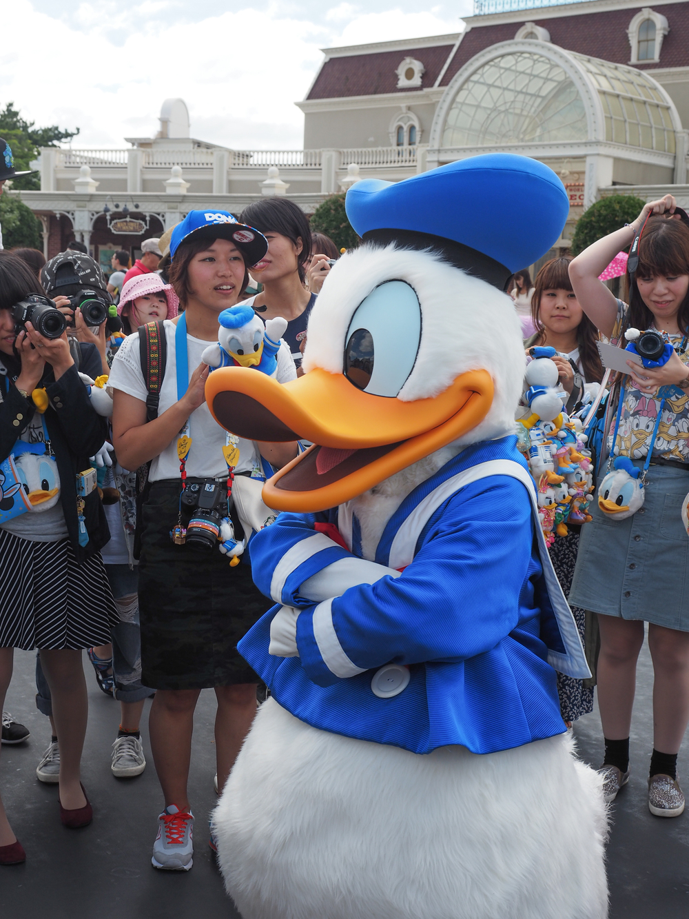 Some serious Donald Duck fans