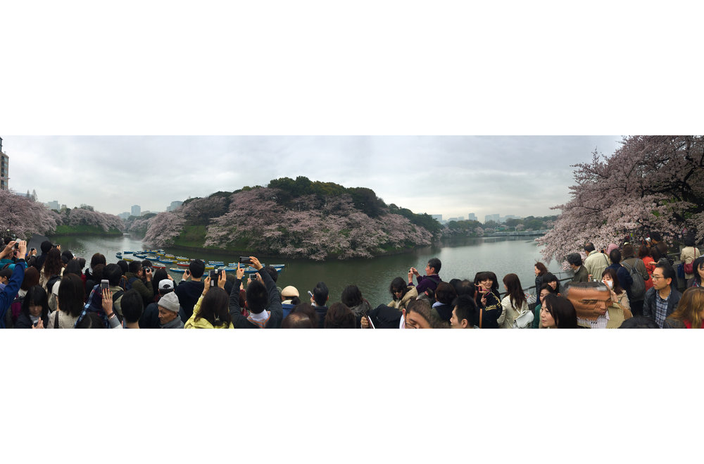 Mass amounts of people checking out the Imperial Palace Moat