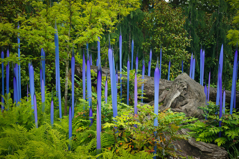 Chihuly Glass Installation in the Garden