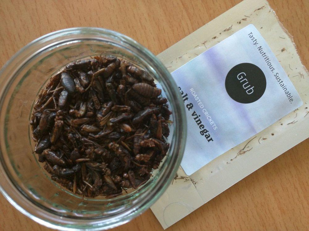 Salt and vinegar crickets
