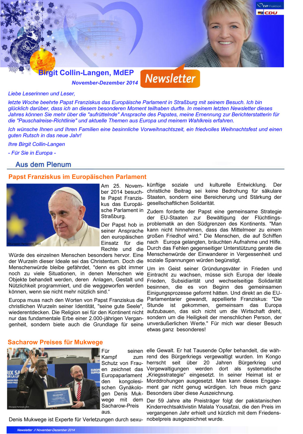 newsletter-nov-dez-2014.jpg