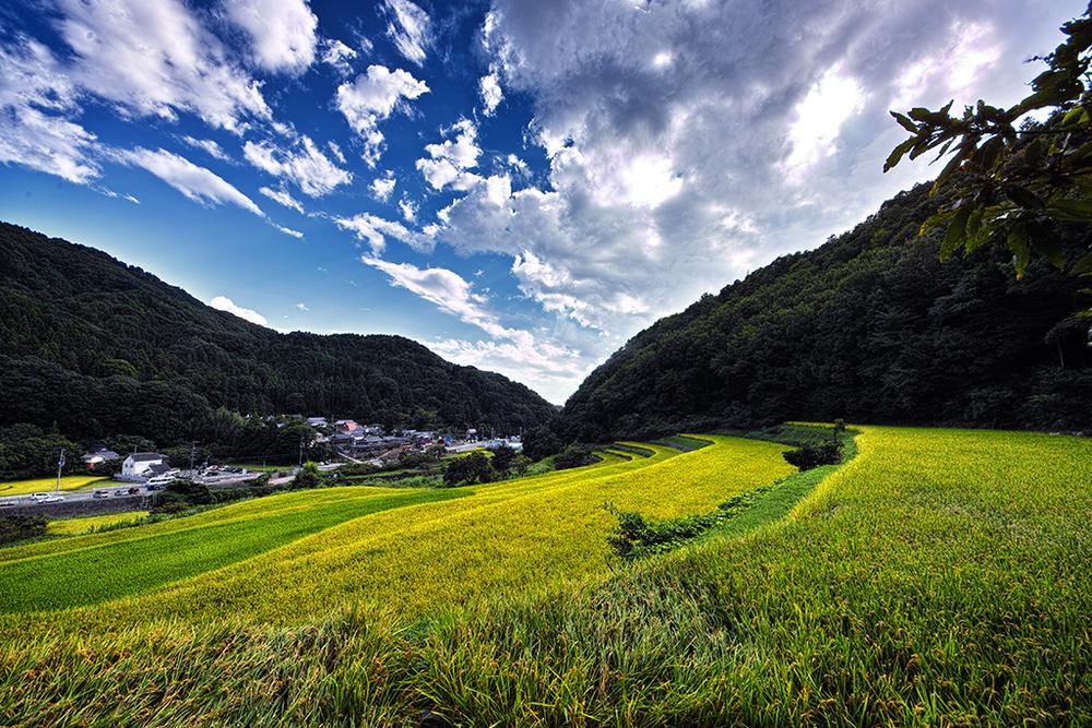 Minoh landscape