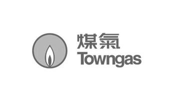 sponsor logos_towngas.png