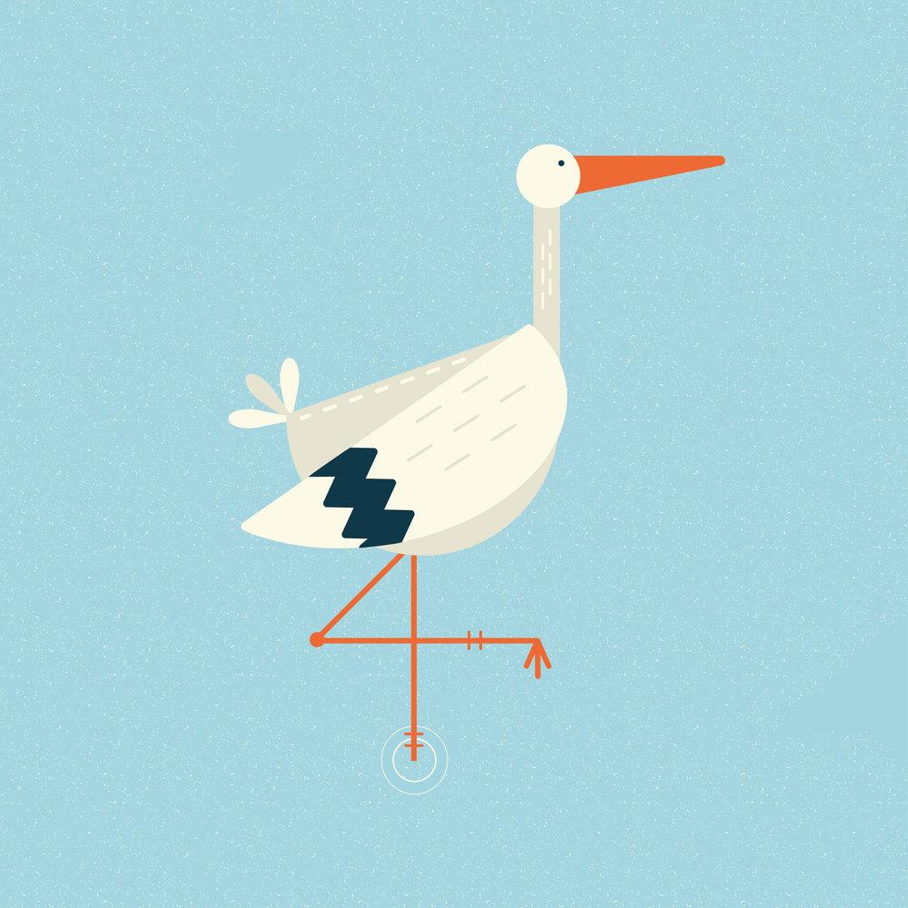 Stork-01.jpg