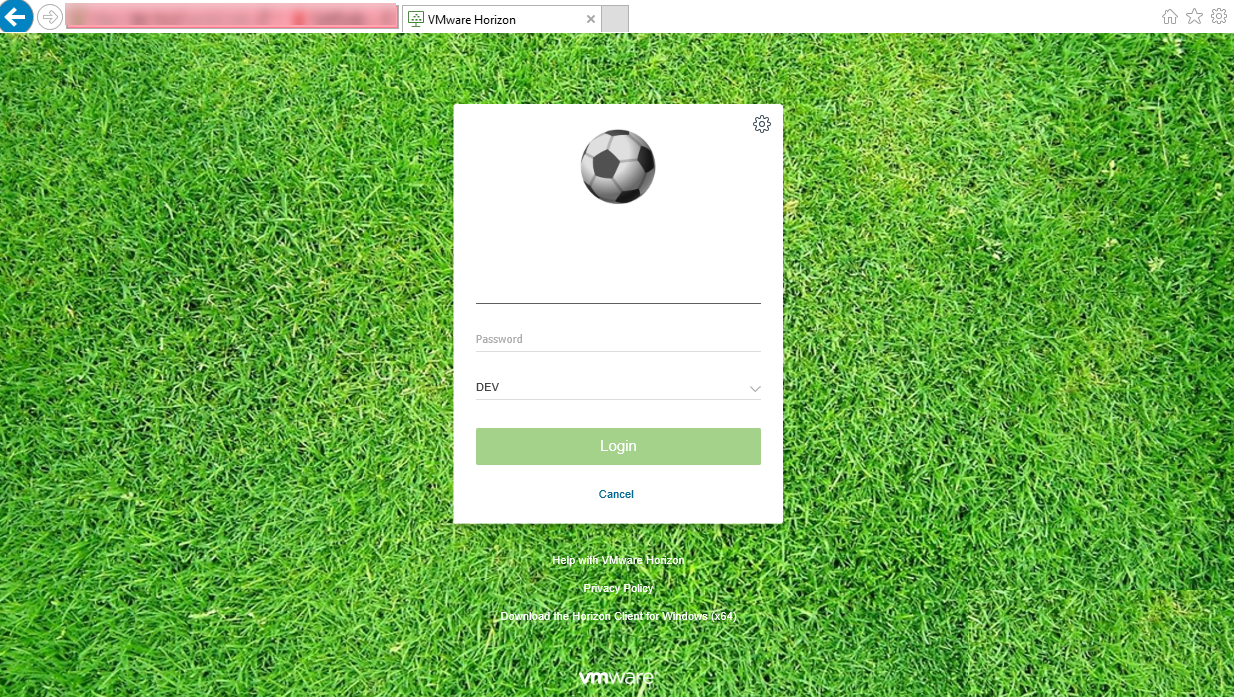 Horizon View 7 X - Branding the Logon page — Define Tomorrow™