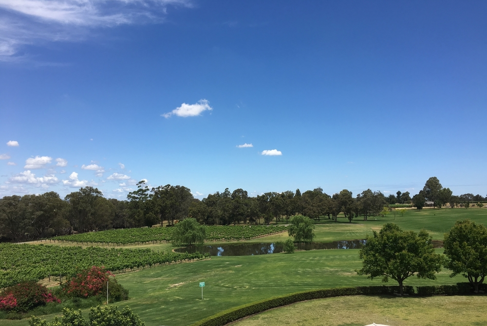 wa swan valley travel blog #thisiswa