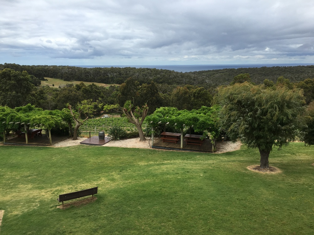 WA travel blog south west wine tour