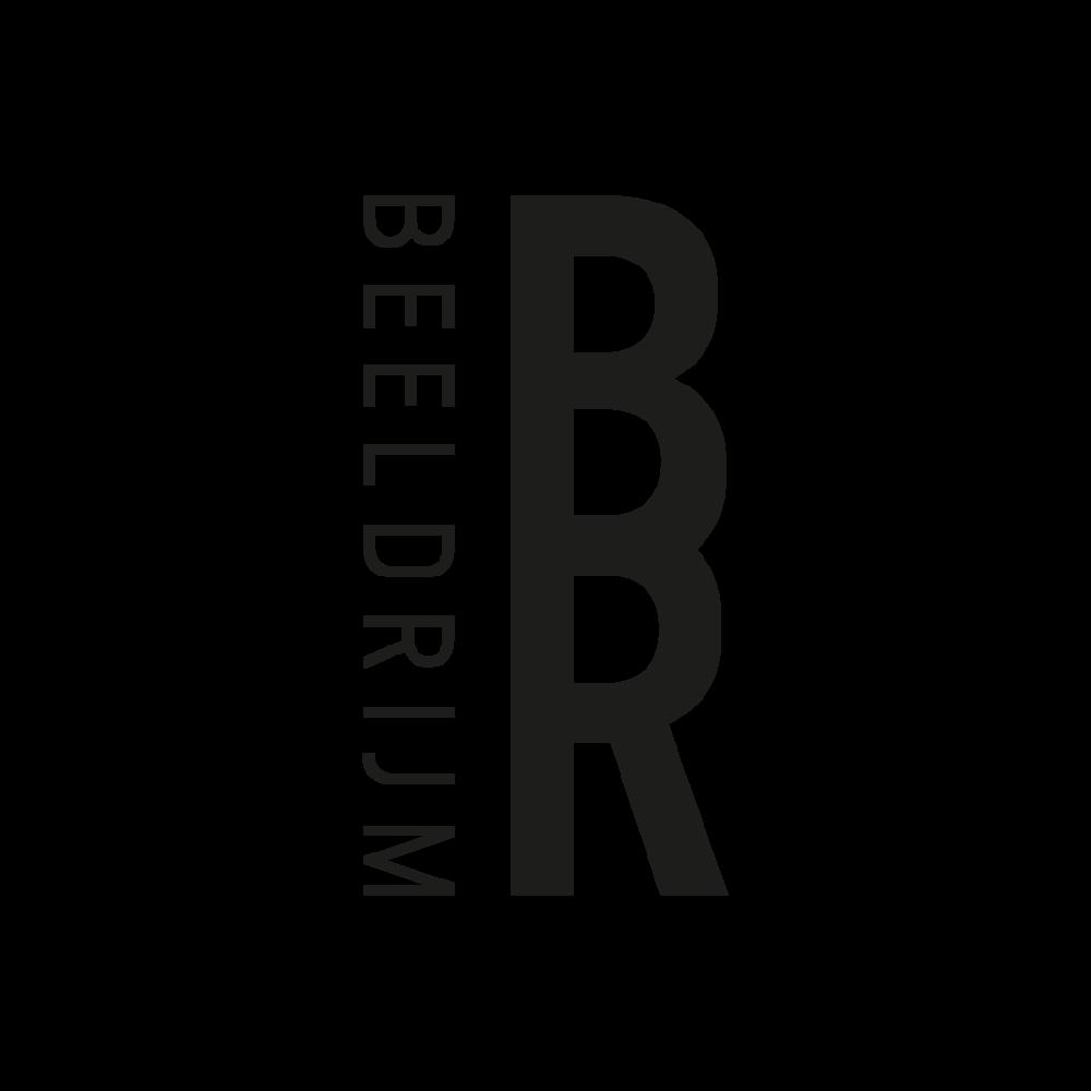 logos overzicht_beeldrijm.png