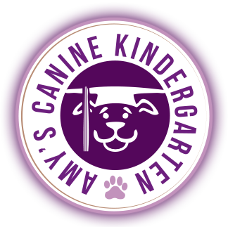 amys canine kindergarten.png