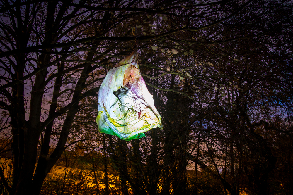(c) Anita Roye for Longbridge Light Festival 2014, the artwork was created with West Heath Youth Group