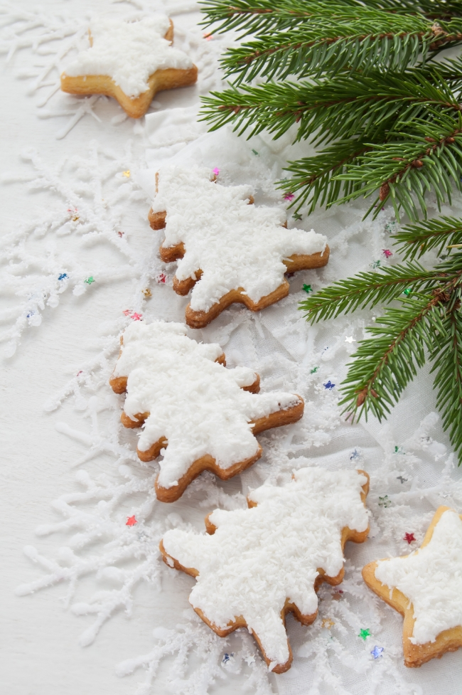 Coconut Frosted Gluten Free Sugar Cookies | Buddha Brands Co.