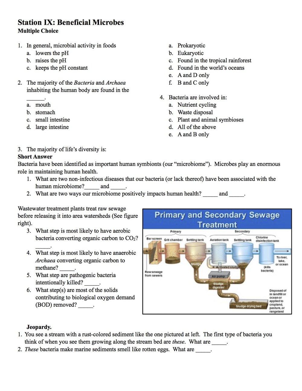 Microbe Mission 2017 page 4.jpg