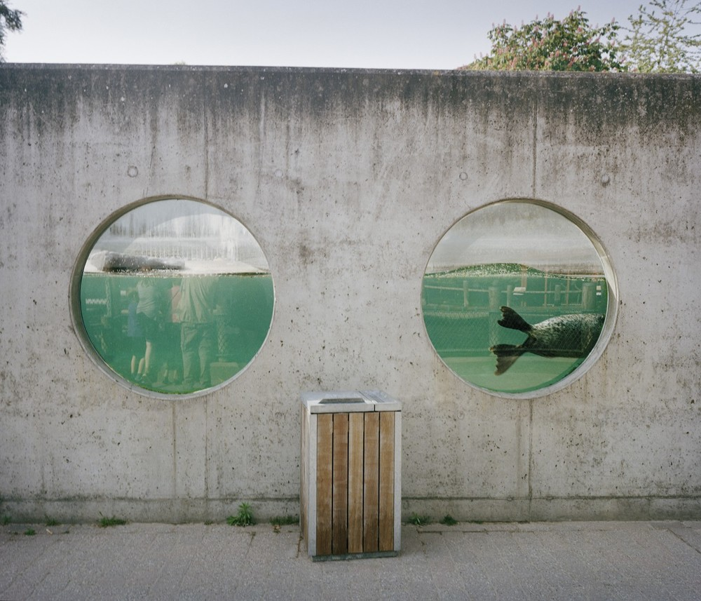 Heartbreaking Photos Depict Sad Tales from the World's Zoos