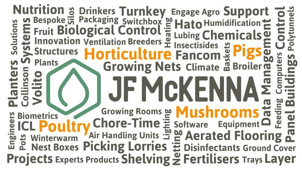McKenna word cloud.jpg