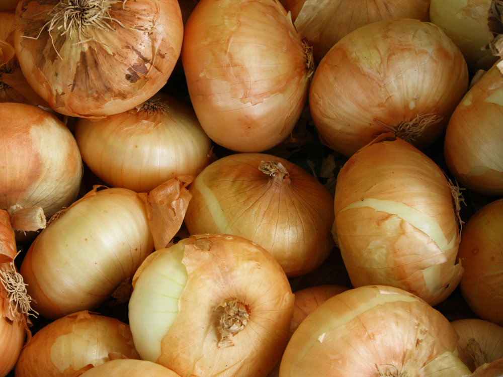 Onions - Download Crop Programme
