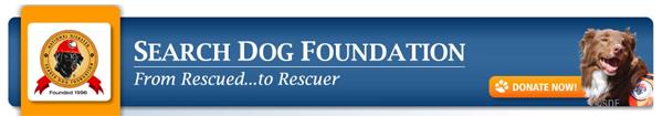 Search dog foundation
