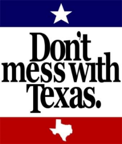 Don't Mess with Texas image